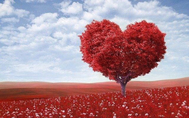 Strom ve tvaru srdce